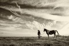 Horse and prairie sky