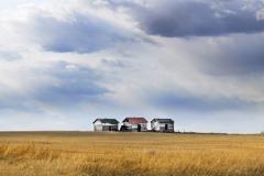 Prairie Trio